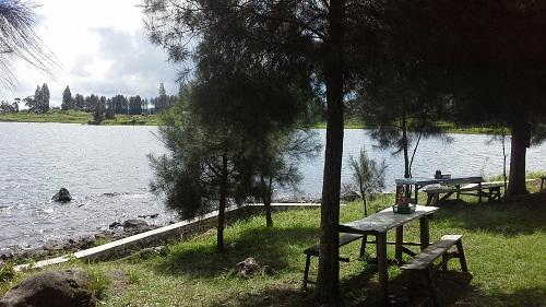 """Pesona Danau Kembar: Rimbun daun pinus menaungi tempat duduk untuk pengunjung di """"Danau Diateh"""" (Rabu, 3/8/2016)"""