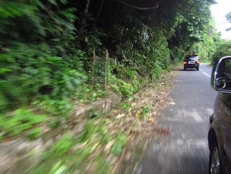 Sepanjang perjalanan di sisi jalan ditumbuhi pepohonan hijau dan rindang membuat udara sejuk dan segar di Kota Sabang Pulau Weh (Kamis, 29 Desember 2016)