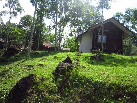Penginapan Milik Masyakat/Pengusaha  (Pantai Gapang Sabang Pulau Weh, Kamis 29 Desember 2016)